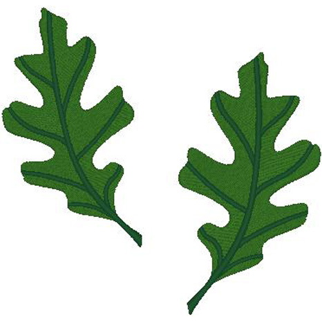 2 Small Oak Leaves